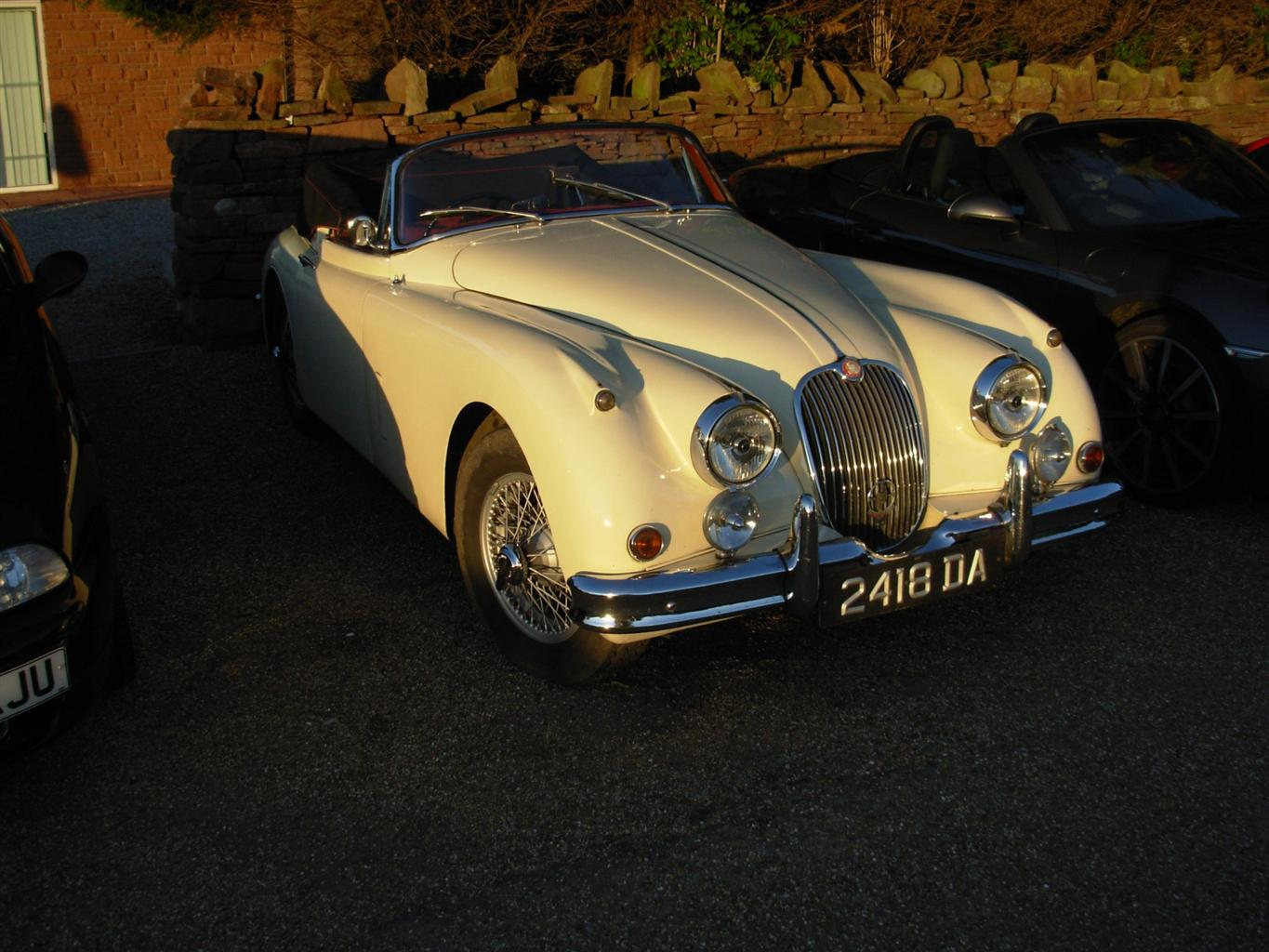 jaguar nite club. Cars Review. Best American Auto & Cars Review