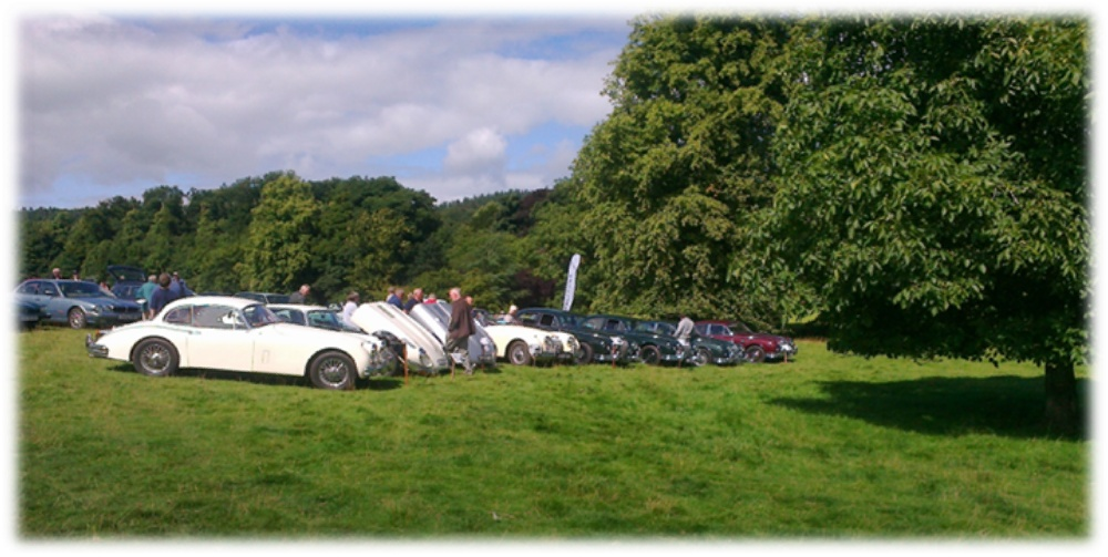 Solway Jaguar Dalemain 2013 Display