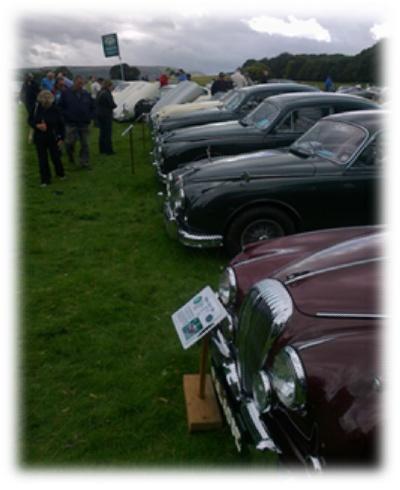 Solway Jaguar MK II's